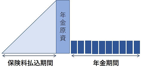 年金保険.jpg