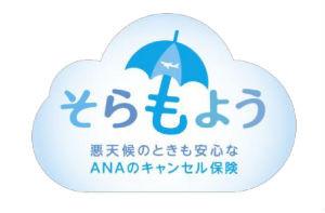 日本初!悪天候により、欠航のおそれがある場合などに 航空券の取消・払戻手数料を補償するキャンセル保険「そらもよう」を発売