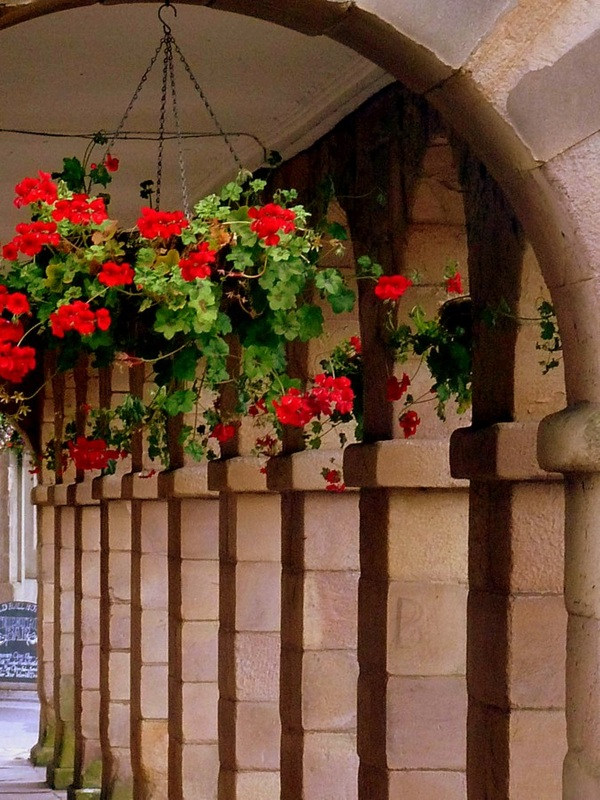 No.6 The Square colonnade flowers.jpg