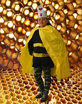 la abeja 4.jpg