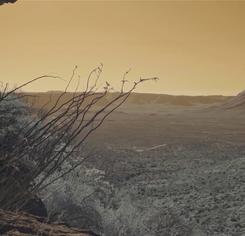 captura-de-pantalla-2020-11-15-a-las-2