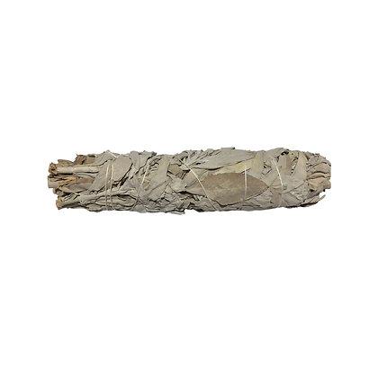 White Sage Smudge Stick Large - LMG Rocks and Crystals