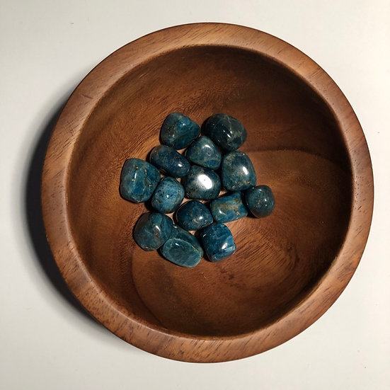 Apatite Tumbled - LMG Rocks and Crystals