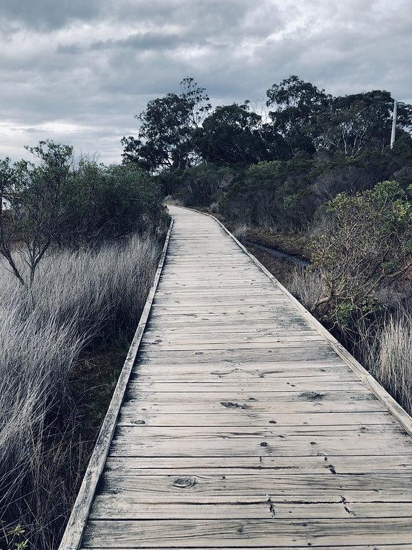 walkway website _IMG_2054.jpg