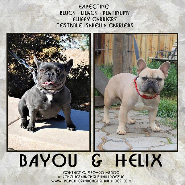 bayou&helix-001.jpg