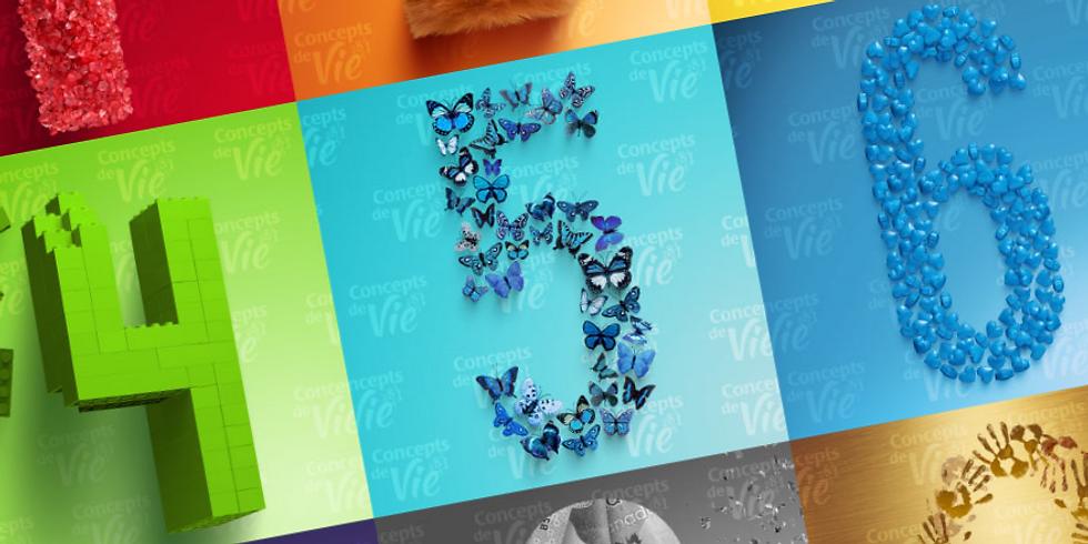 Numérologie et Huiles essentielles