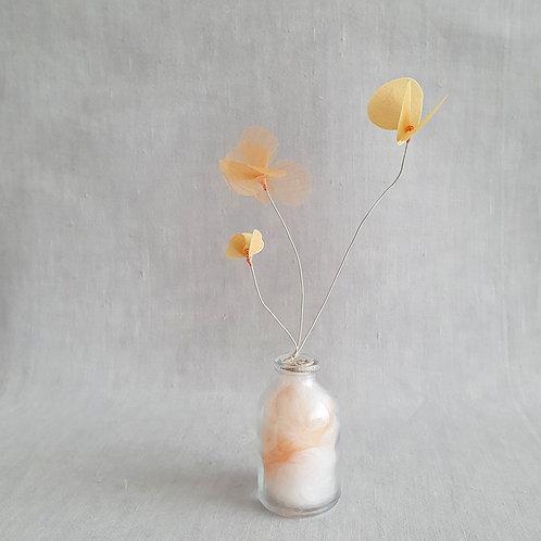 Fleur de Nuage 015
