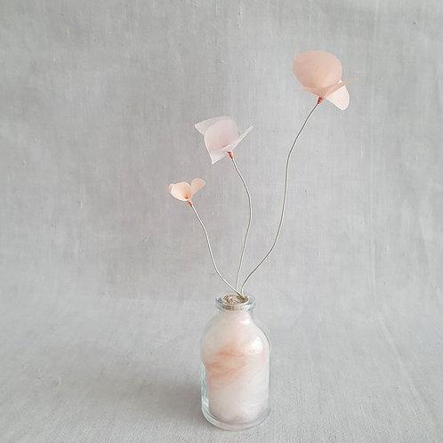 Fleur de Nuage 018