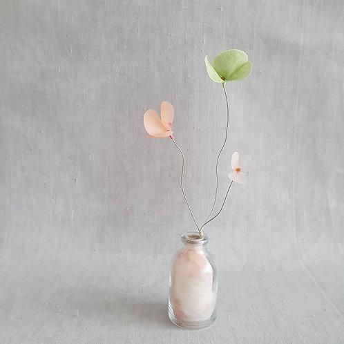 Fleur de Nuage 014