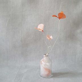 laurence-aguerre-fleur-de-nuage.jpg