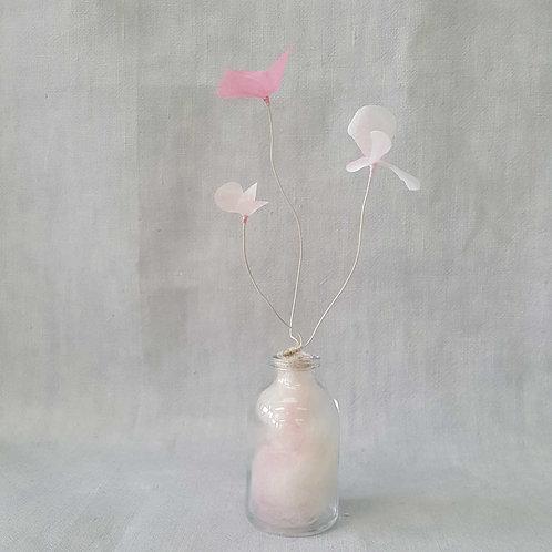 Fleur de Nuage 001