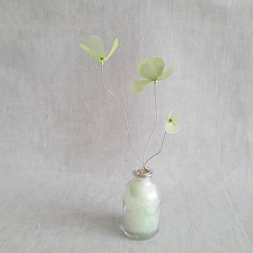 Fleur de Nuage 016