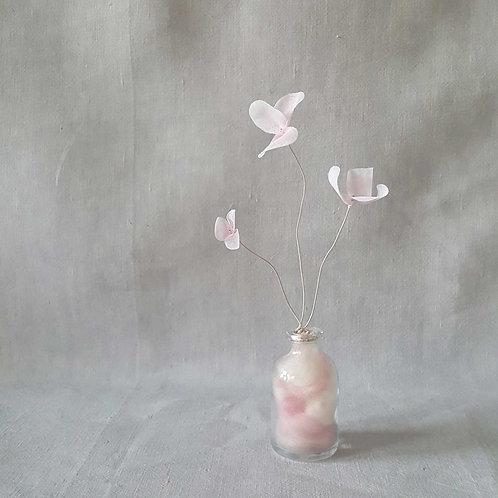 Fleur de Nuage 003