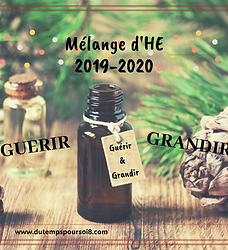 HE - Synergie 2019-2020 - GUERIR & GRAND