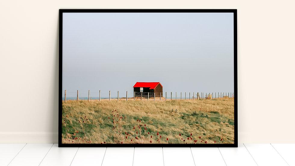 Winchelsea Nature Reserve #2 A3 Print