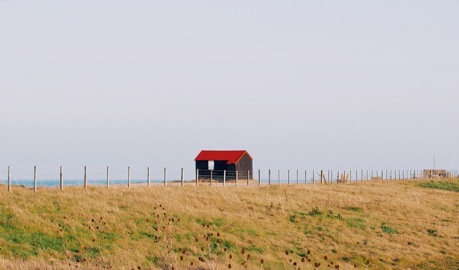 Rye Harbour Nature Reserve, Winchelsea #2