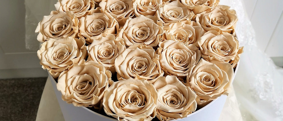 Champagne Roses in Large Hat Box