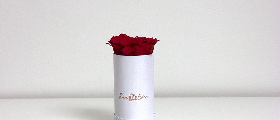 One Rose (Pearl White)
