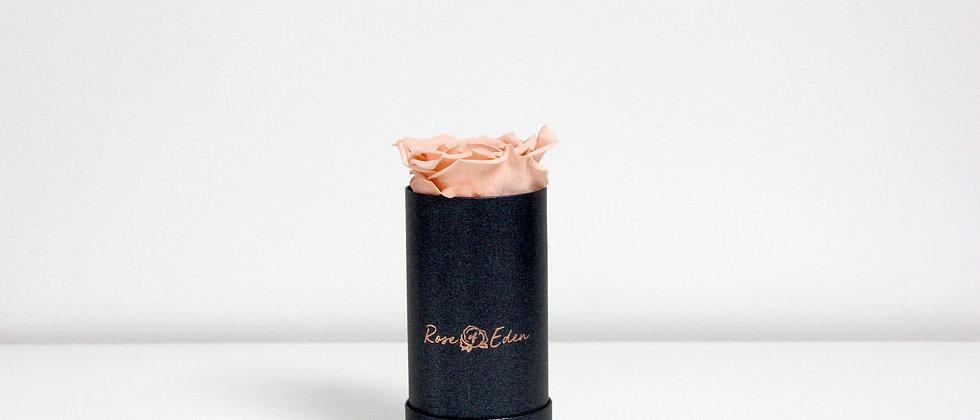 One Rose (Graphite Black)