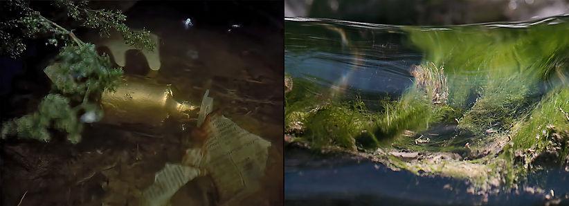 Díptico VI(Bajo el agua)
