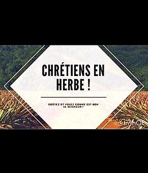 Chretien en Herbe Logo.jpeg