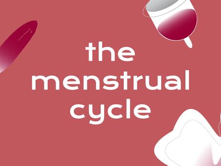 The Menstrual Cycle 101: The Bachelor Edition