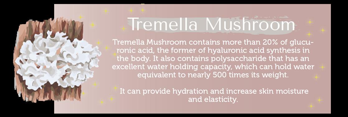 Tremella Mushroom.png