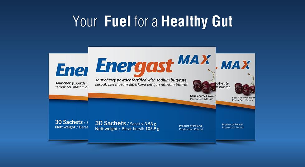 EnergastMax Webpage 01-02.png