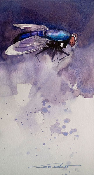 Watercolor painting of Blowfly