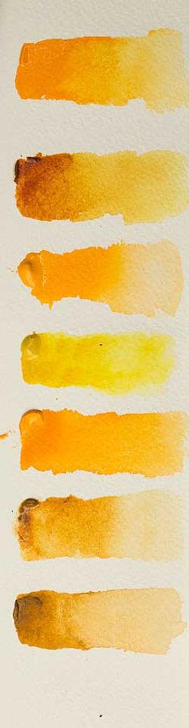 Yellow Watercolor Samples