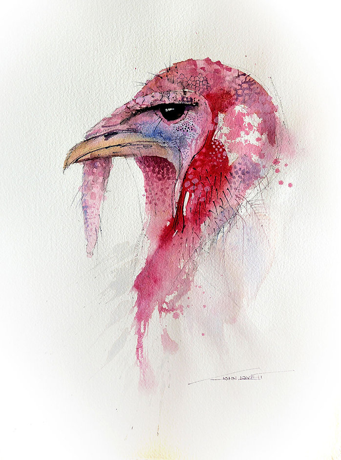 Watercolor painting of Turkey Head