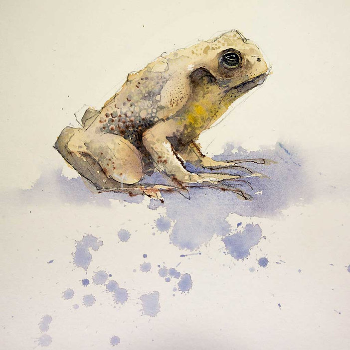 Example of painting on Hot Pressed watercolor paper
