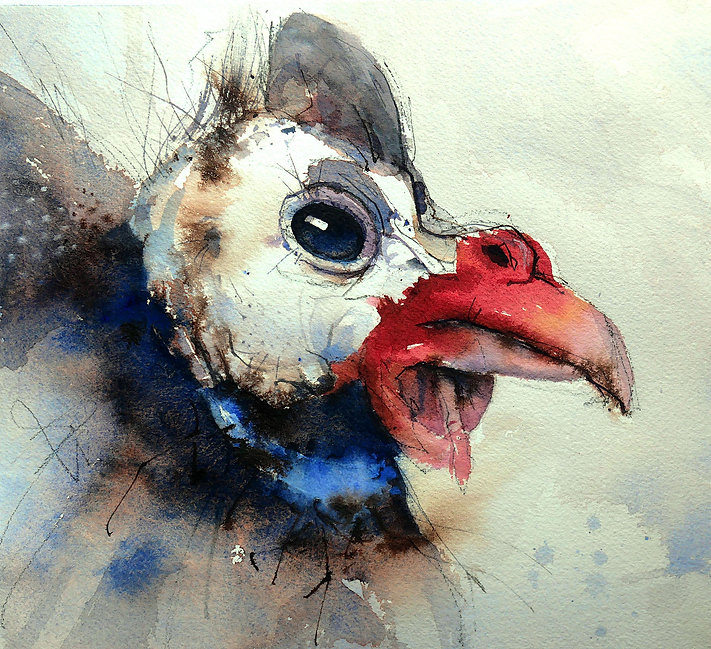 Watercolor painting of a Guinea Fowl Head