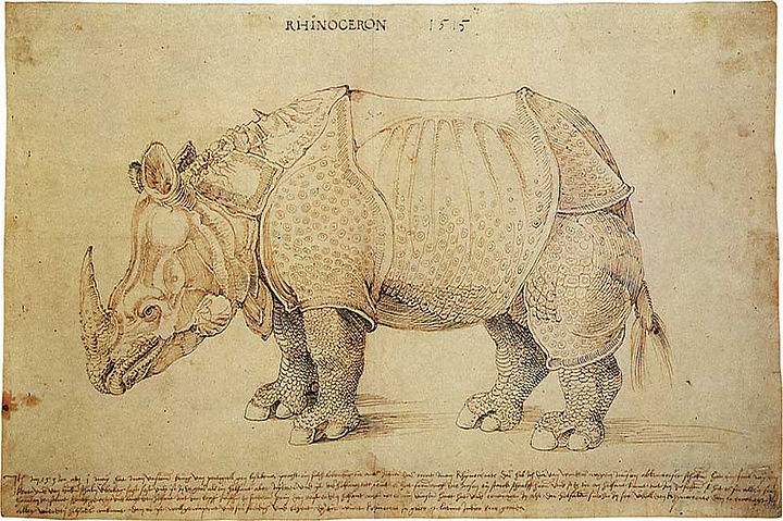 Albrecht Dürer [Public domain], via Wikimedia Commons