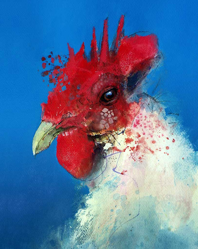 Chicken © John Lovett