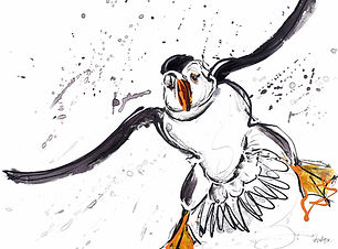 Flying Puffin ..... 25x23 ins (64 x59 cm