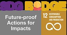 SDGbadge_Logo_#12.png