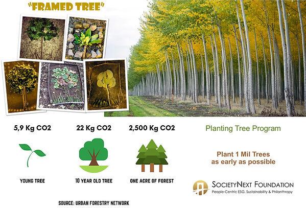 Tree.pm_banner_trainer_v2.jpg