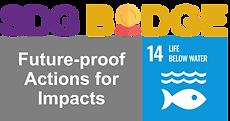 SDGbadge_Logo_#14.png