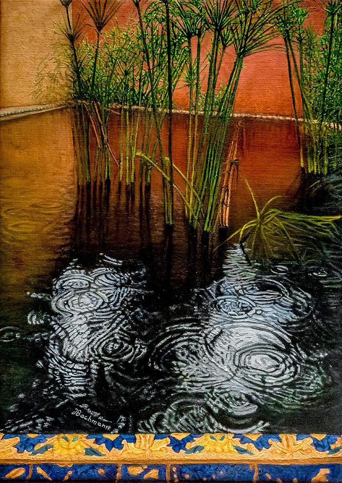Bassin aux papyrus