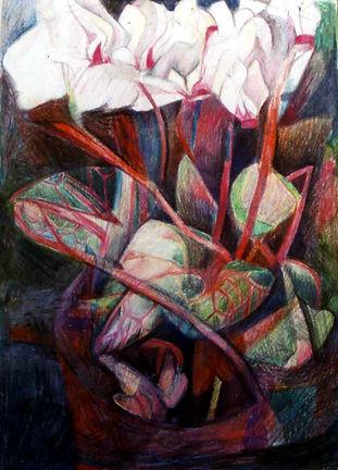 Cyclamens-crayonscoul-21x30cm-1999.jpg
