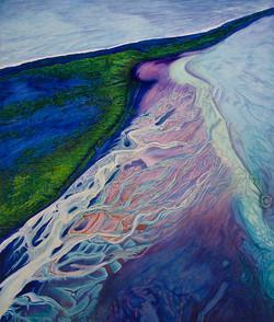 Algues sur fond violet