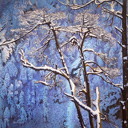 Sentinelles hivernales