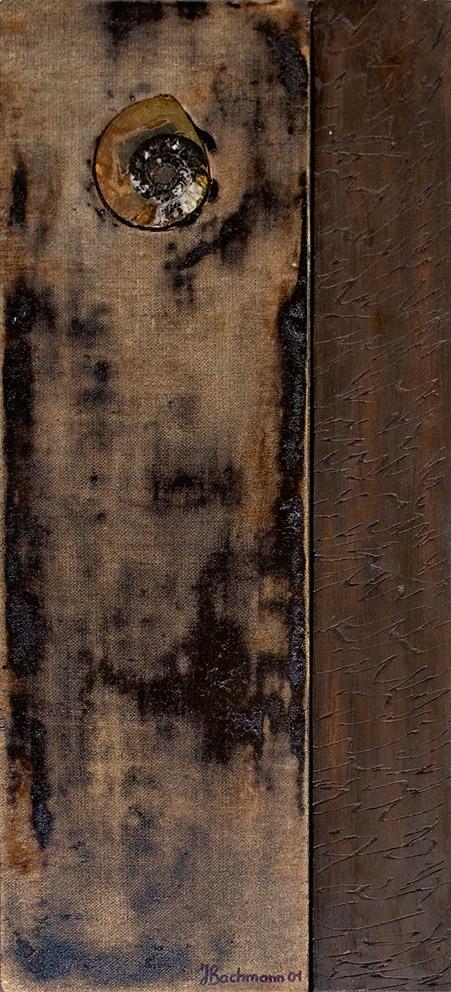 Fossile brun I