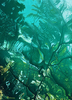 Cenote et mystères