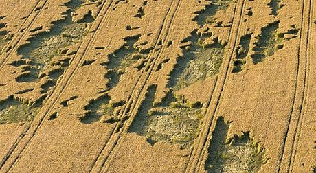 degats-agricole.jpg