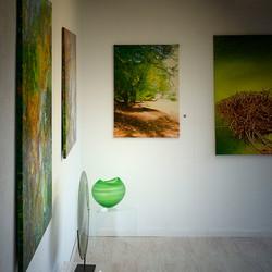Plexus Gallery, Fribourg