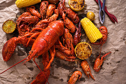 Lobster and Crawfish