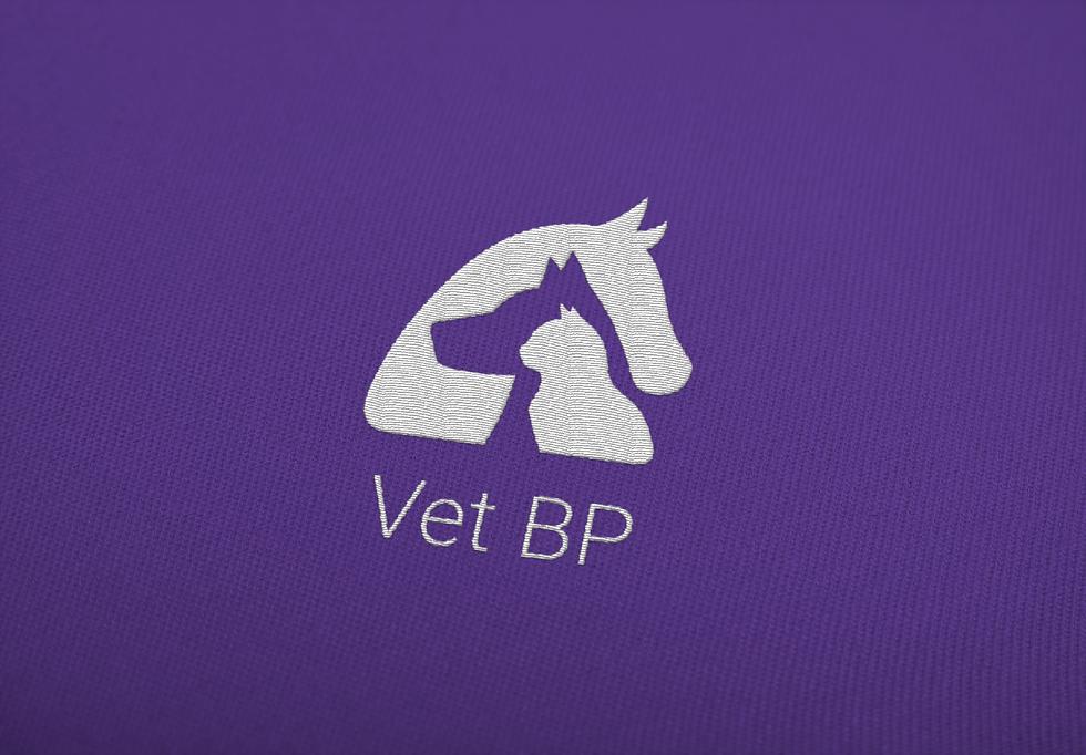 Vet BP_Separation-06.png