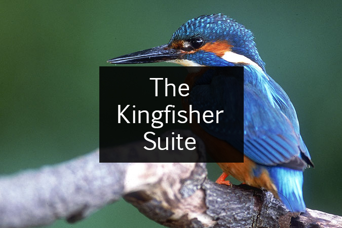 Kingfisher Suite